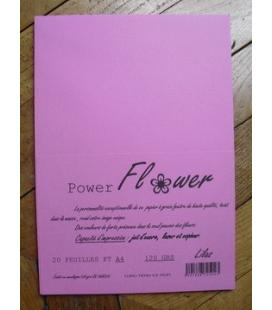 Ram 20 feuilles ft A4 120grs LILAS Flower Power