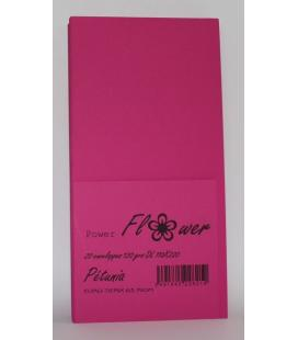 pq 20 enveloppes 110x220 PETUNIA Power Flower DL 120grs