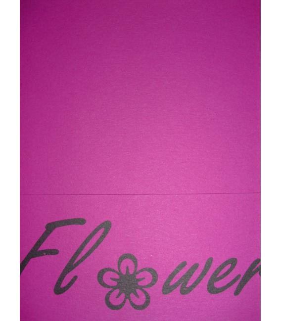pq 20 enveloppes  110x220  CLEMATITE Power Flower DL 120grs